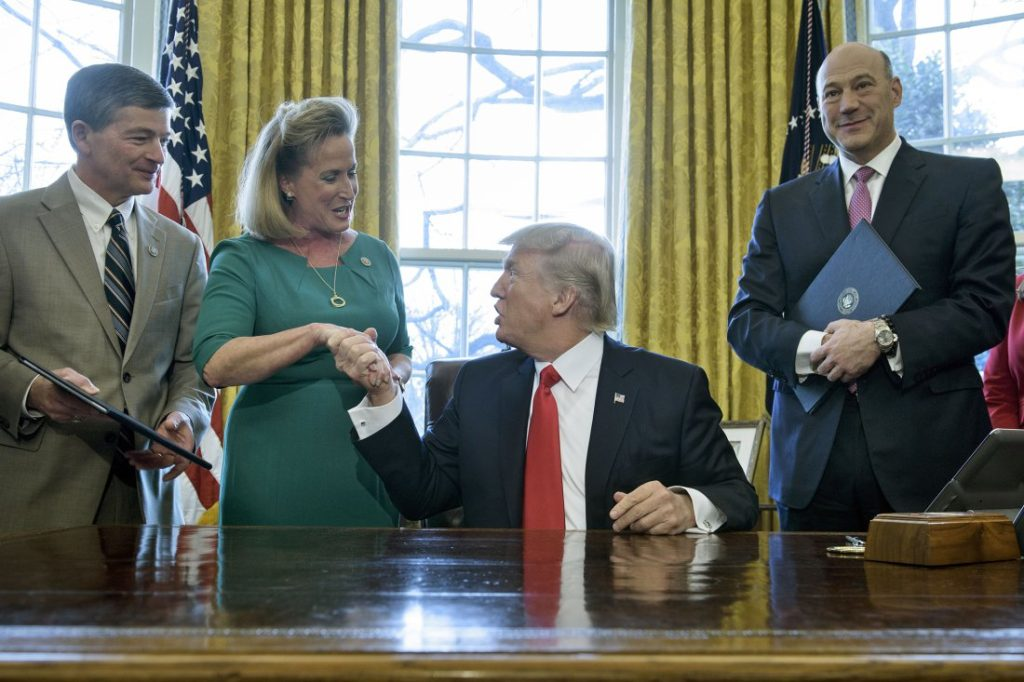 US President Donald Trump shakes the hand of Rep. Ann Wagner (R-MO) after signing a memorandum about Labor Department rules on investing in the Oval Office of the White House on February 3, 2017 in Washington, DC.